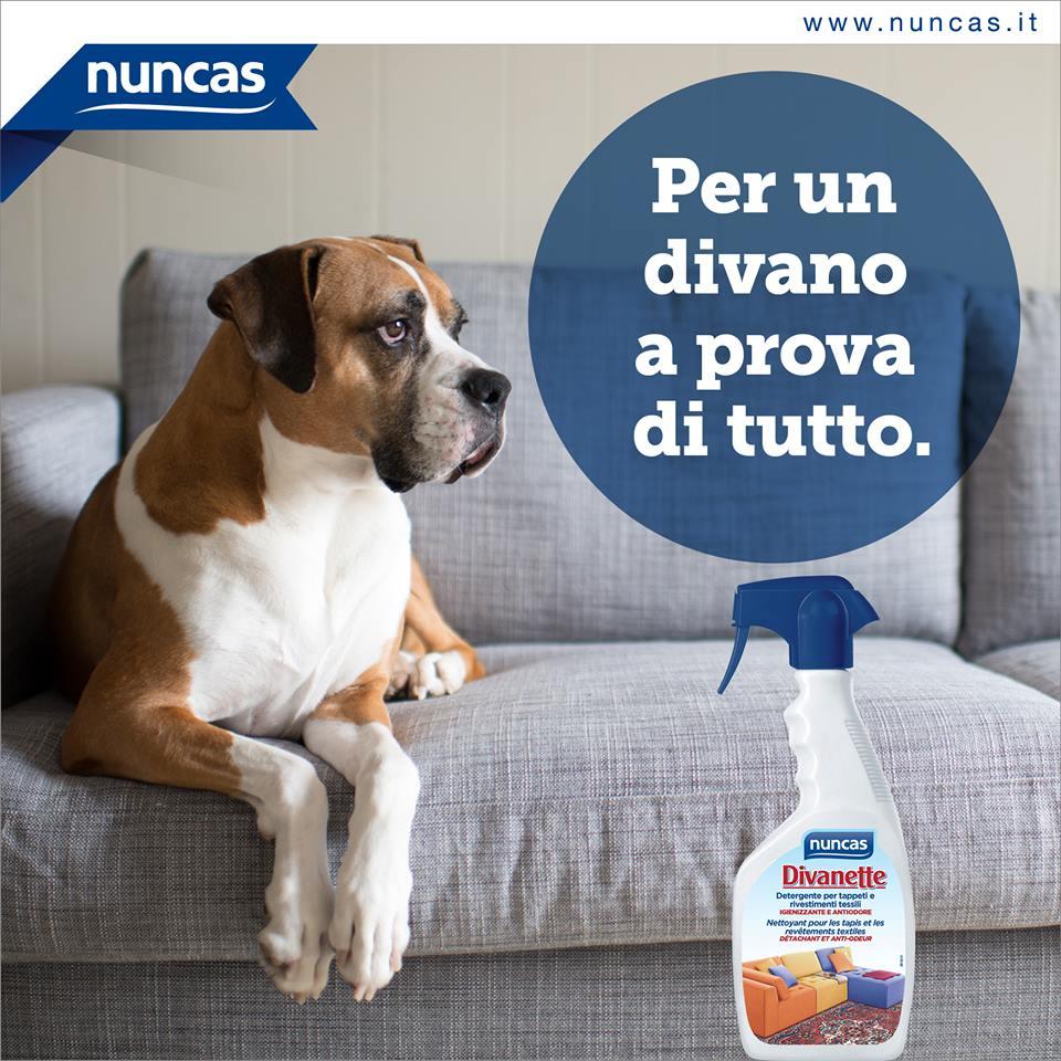 pulizie-divano-nuncas