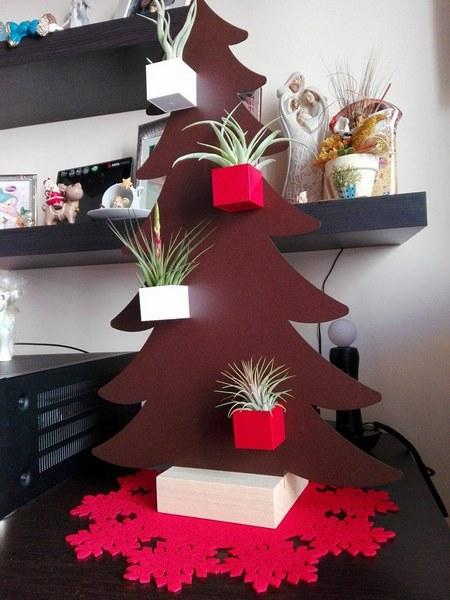 Kalamitica-tillandsia-1-regalo-natalizio