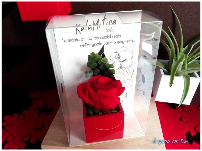 20-Kalamitica-San-Valentino