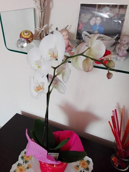 FloraQueen-SanValentino-8