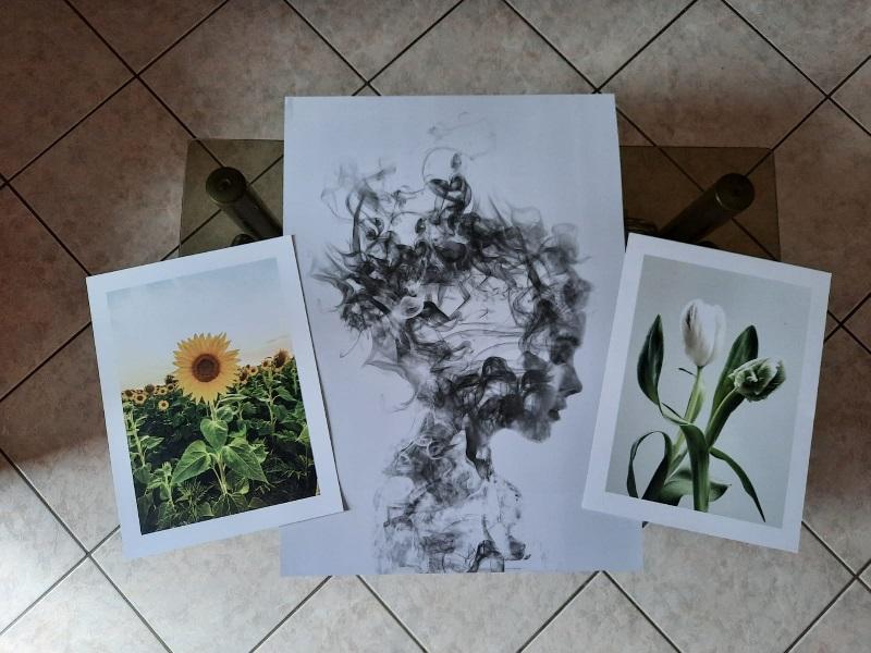 Poster Store: Campo di girasoli, Dissolve me, Tulipani